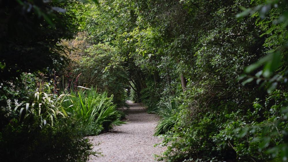 The Seaforde Gardens maze